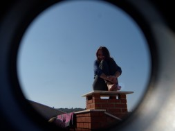 Nina - cat on the roof